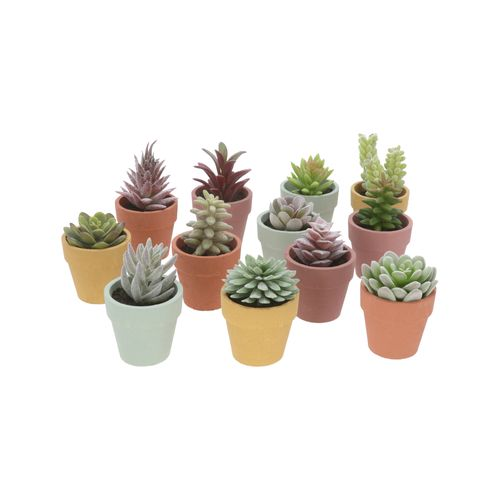 Maceta Cactus Colores 11x6 cm